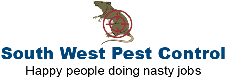 Rat Control Experts in Swindon | South West Pest Control